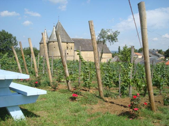 les vignerons de servion 20 Aout 2015